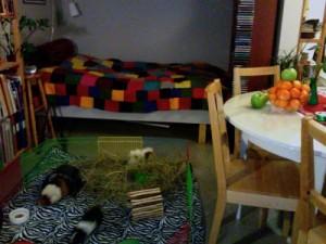Alma, Wilma, Kalle och fega lilla Märta, som gömmer sig bakom höet.